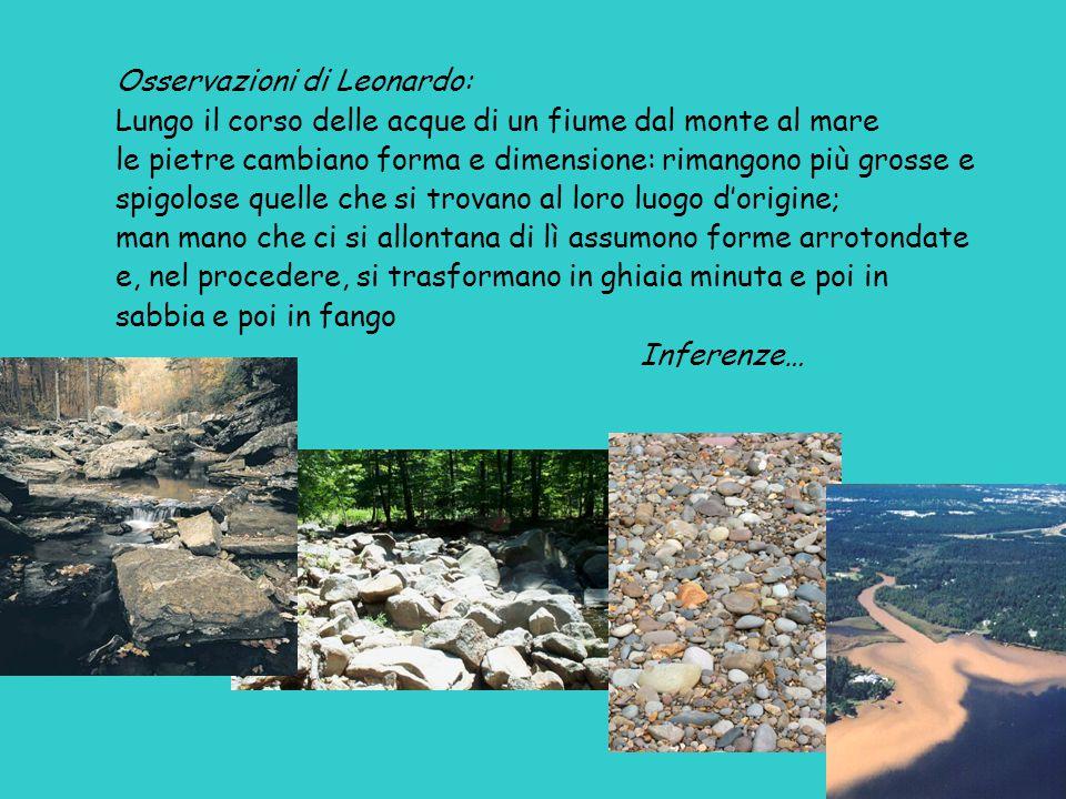 Osservazioni di Leonardo: