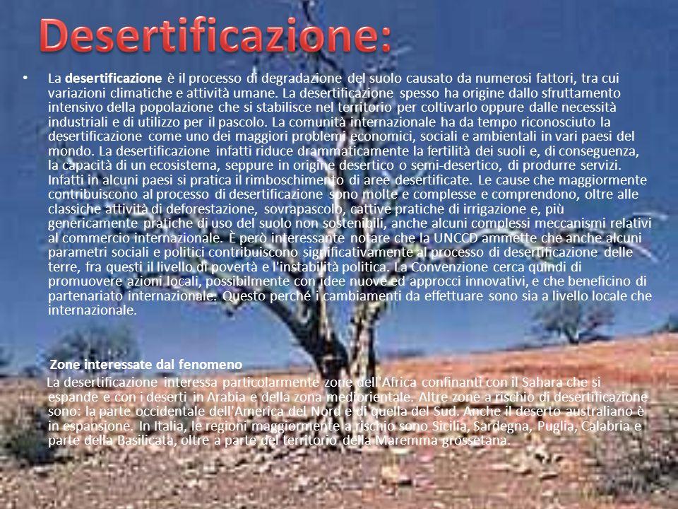 Desertificazione: