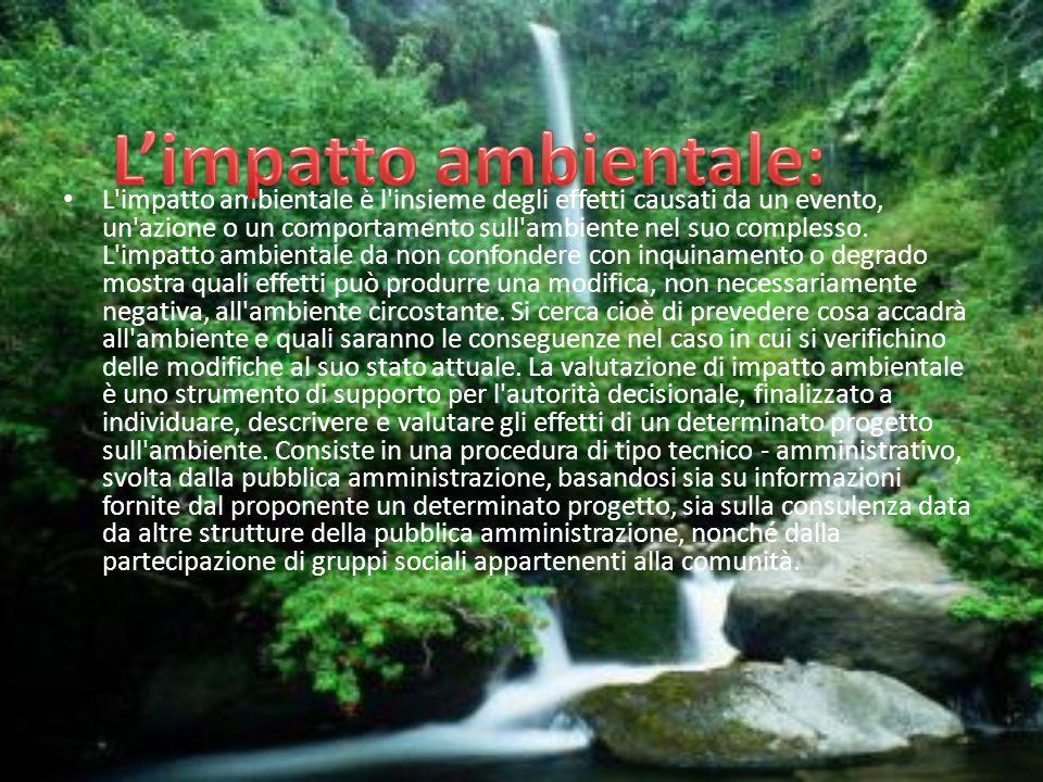 L'impatto ambientale:
