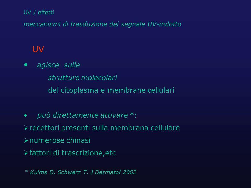 * Kulms D, Schwarz T. J Dermatol 2002
