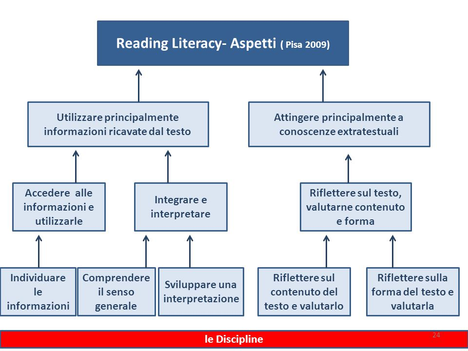 Reading Literacy- Aspetti ( Pisa 2009)