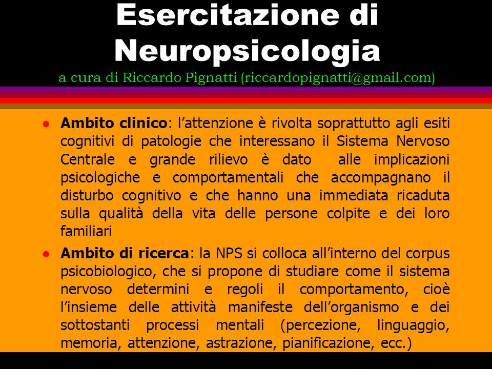 Esercitazione di Neuropsicologia a cura di Riccardo Pignatti (riccardopignatti@gmail.com)