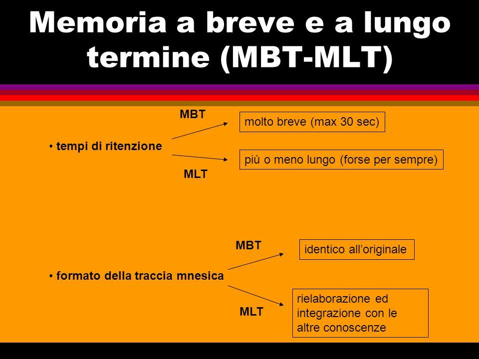 Memoria a breve e a lungo termine (MBT-MLT)