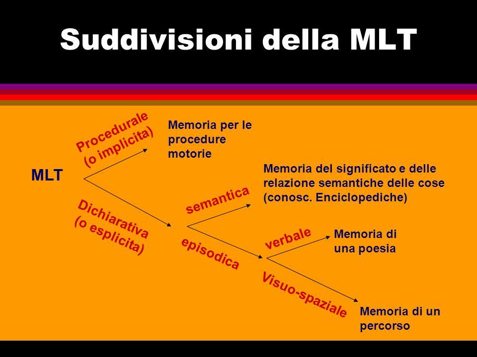 Suddivisioni della MLT