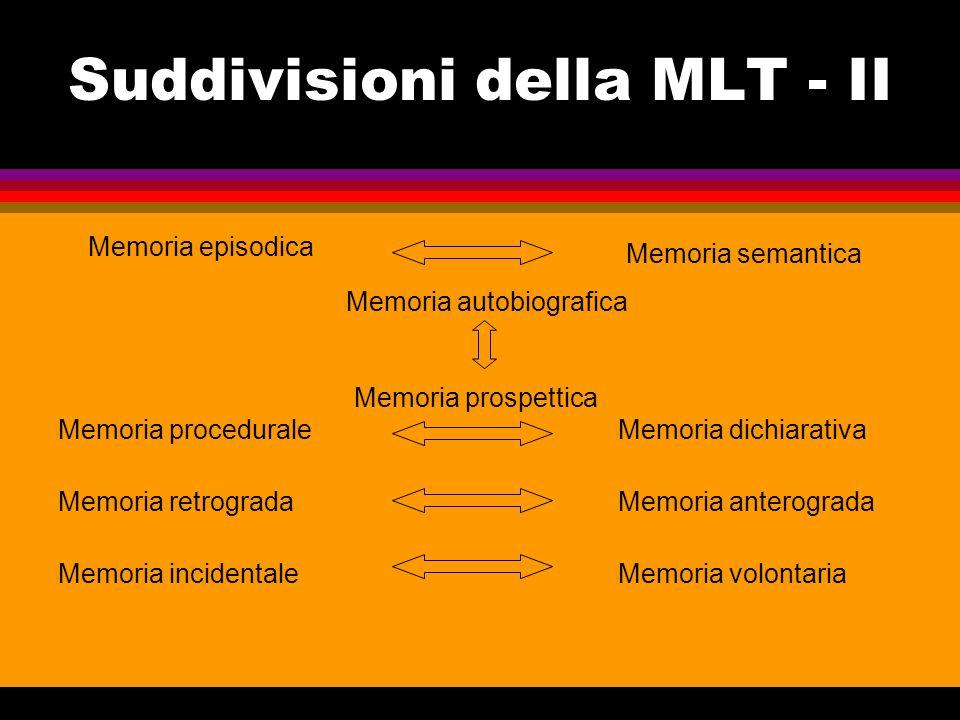 Suddivisioni della MLT - II