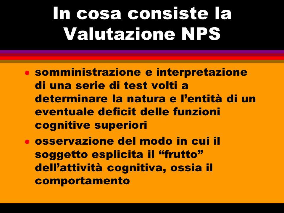 In cosa consiste la Valutazione NPS