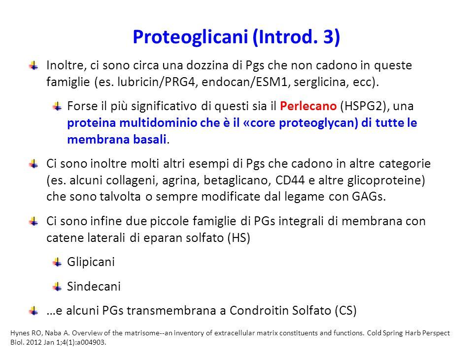 Proteoglicani (Introd. 3)