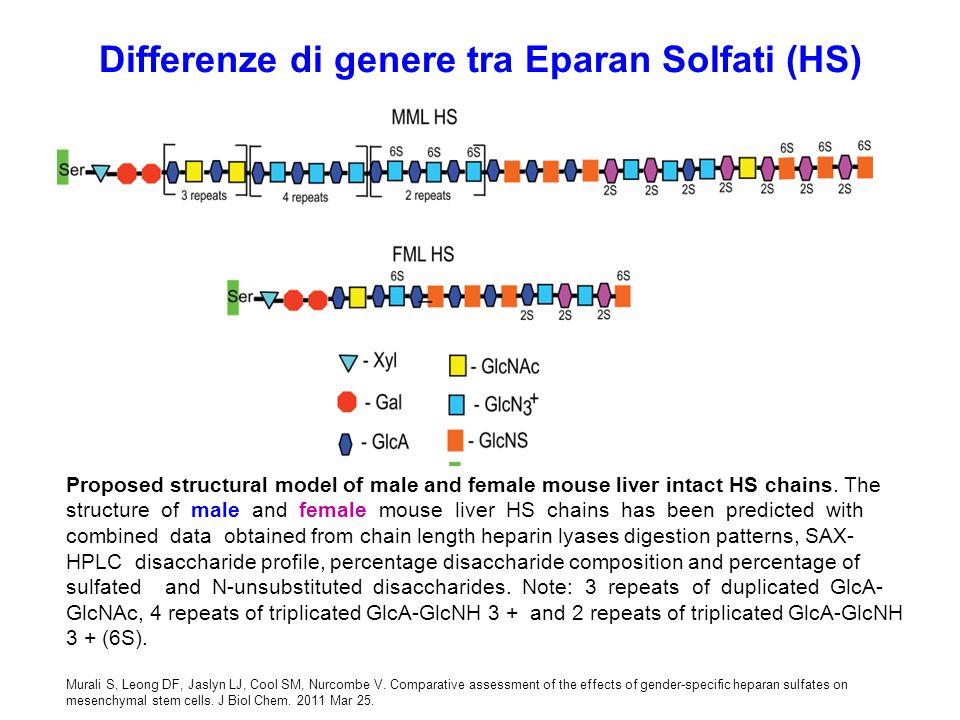 Differenze di genere tra Eparan Solfati (HS)