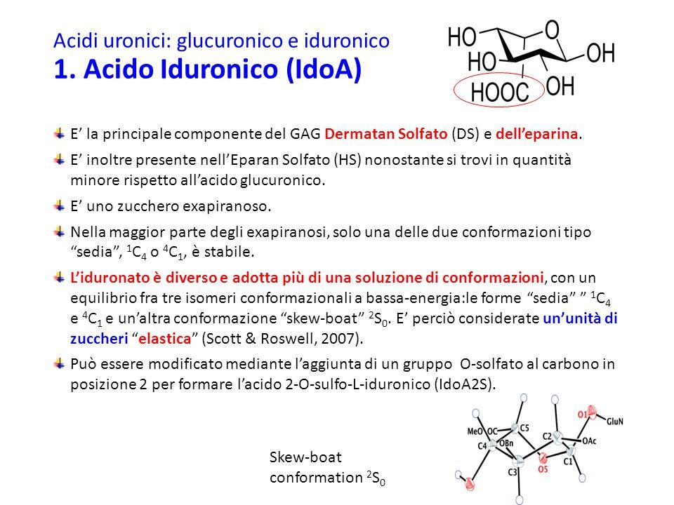 Acidi uronici: glucuronico e iduronico 1. Acido Iduronico (IdoA)