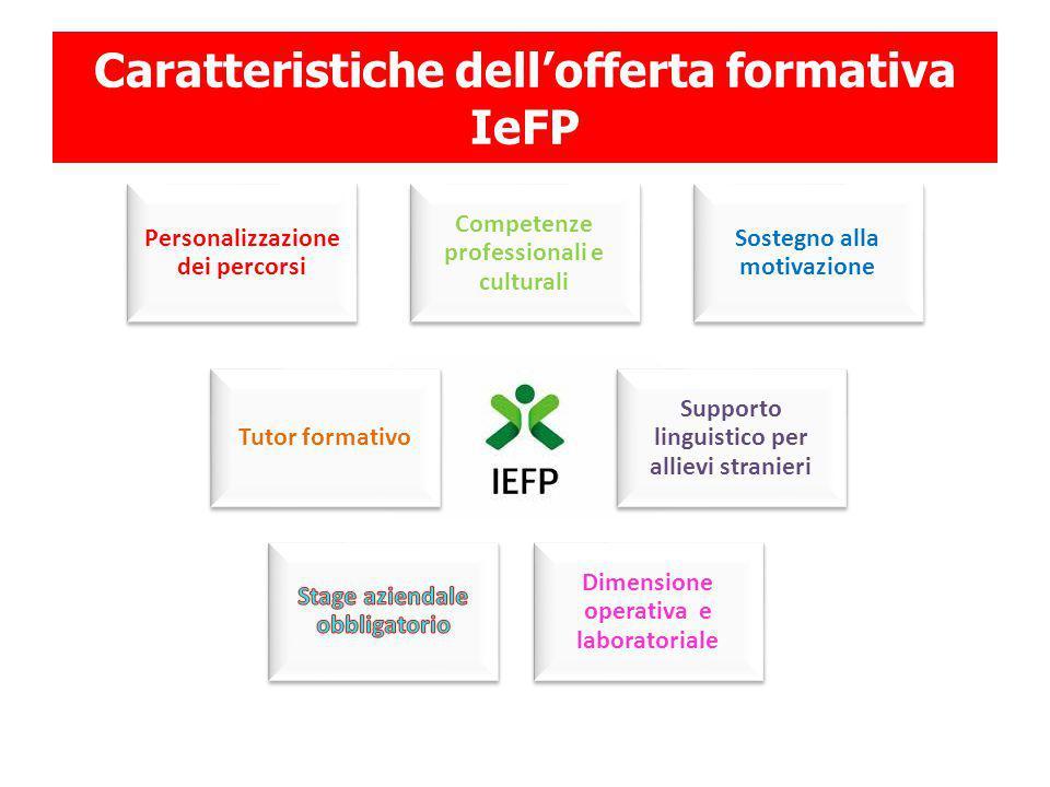Caratteristiche dell'offerta formativa IeFP