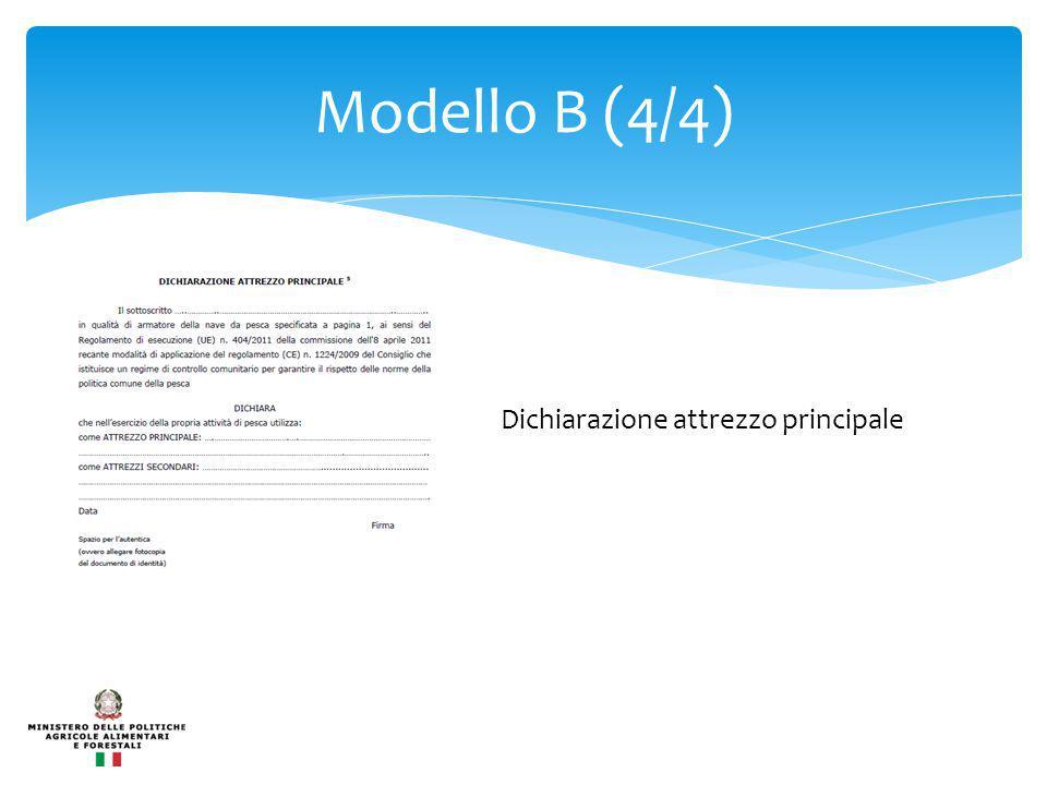 Modello B (4/4) Dichiarazione attrezzo principale