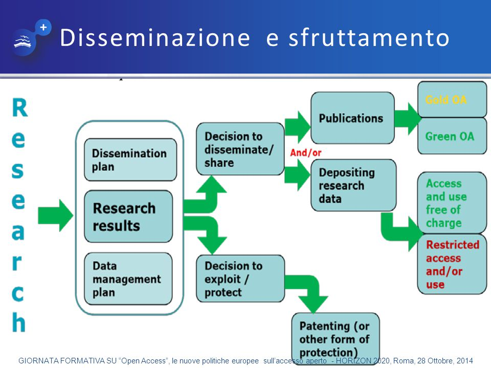 Disseminazione e sfruttamento