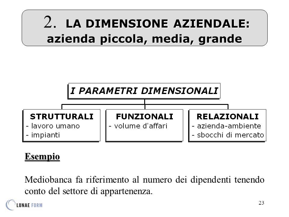 2. LA DIMENSIONE AZIENDALE: azienda piccola, media, grande