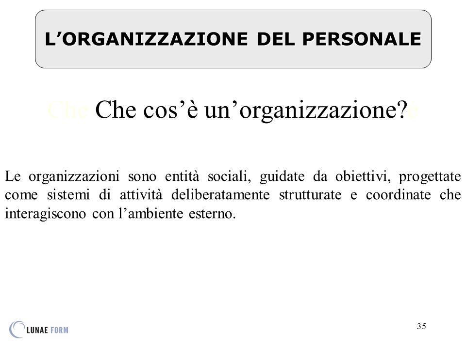 L'ORGANIZZAZIONE DEL PERSONALE