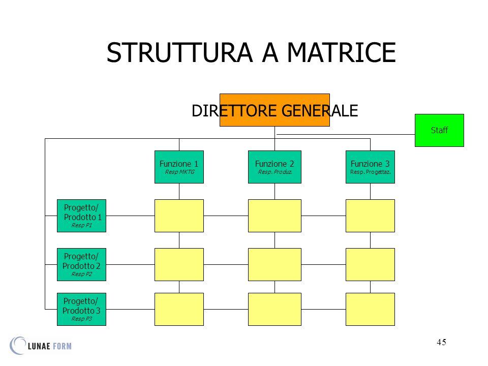 STRUTTURA A MATRICE DIRETTORE GENERALE Staff Funzione 1 Funzione 2