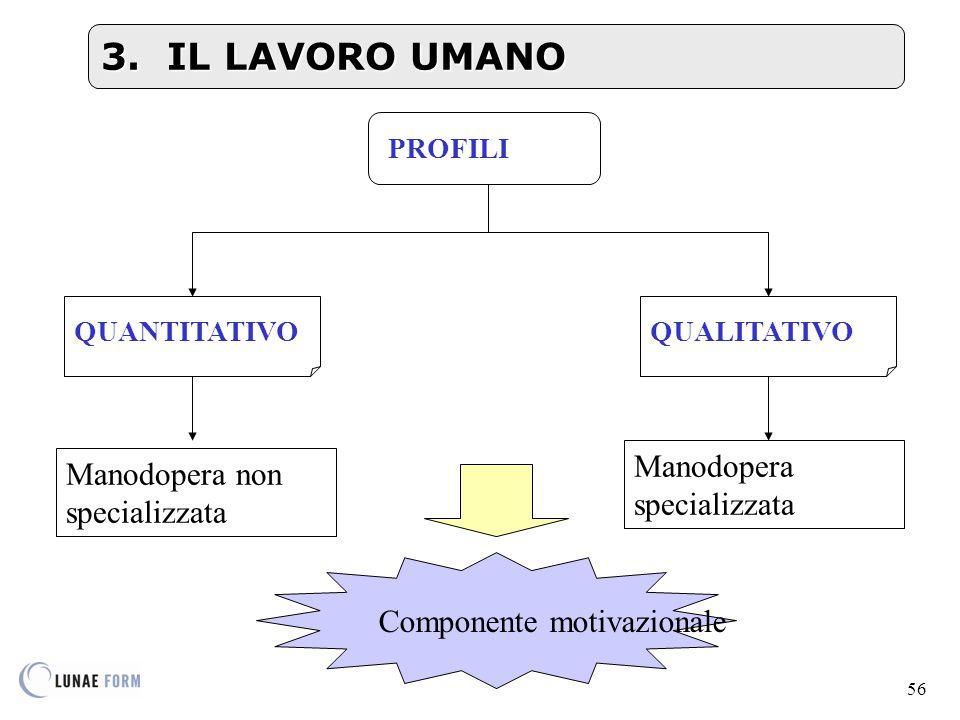 3. IL LAVORO UMANO Manodopera specializzata
