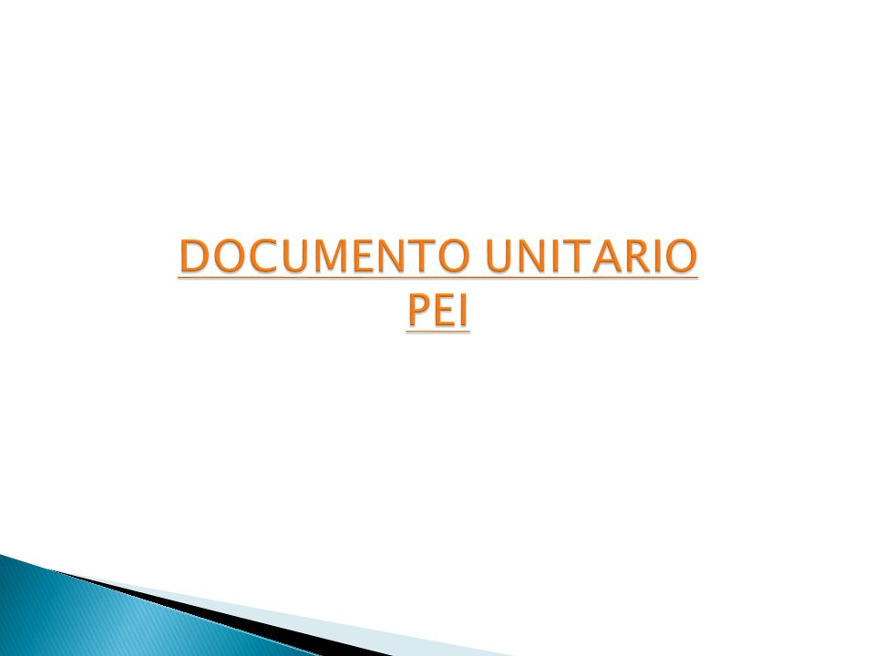 DOCUMENTO UNITARIO PEI