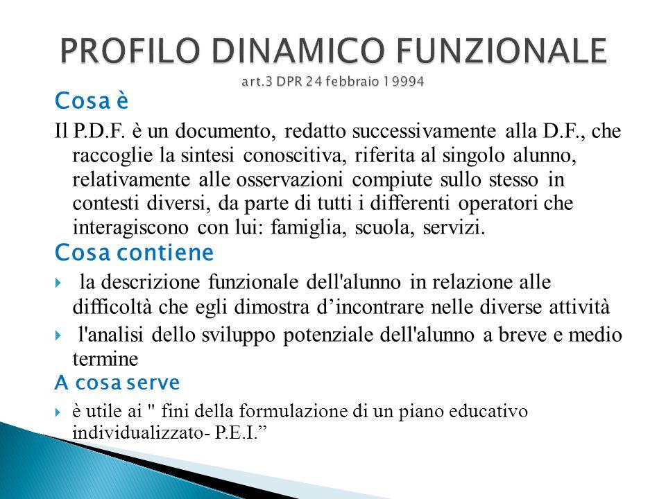 PROFILO DINAMICO FUNZIONALE art.3 DPR 24 febbraio 19994