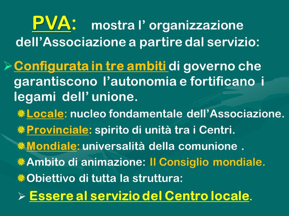 PVA: mostra l' organizzazione dell'Associazione a partire dal servizio: