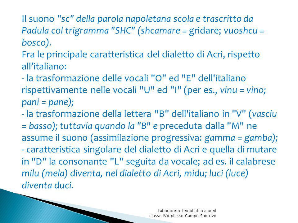 Il suono sc della parola napoletana scola e trascritto da Padula col trigramma SHC (shcamare = gridare; vuoshcu = bosco).
