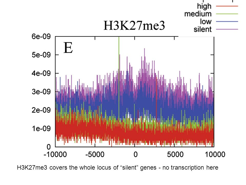 H3K27me3 covers the whole locus of silent genes - no transcription here
