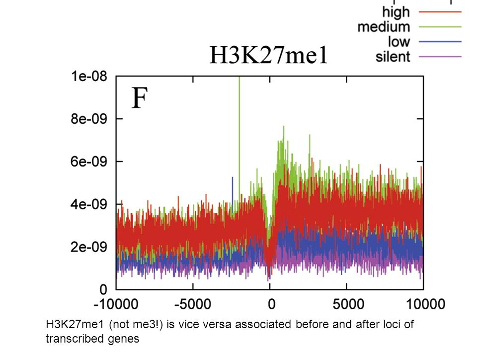 H3K27me1 (not me3!) is vice versa associated before and after loci of