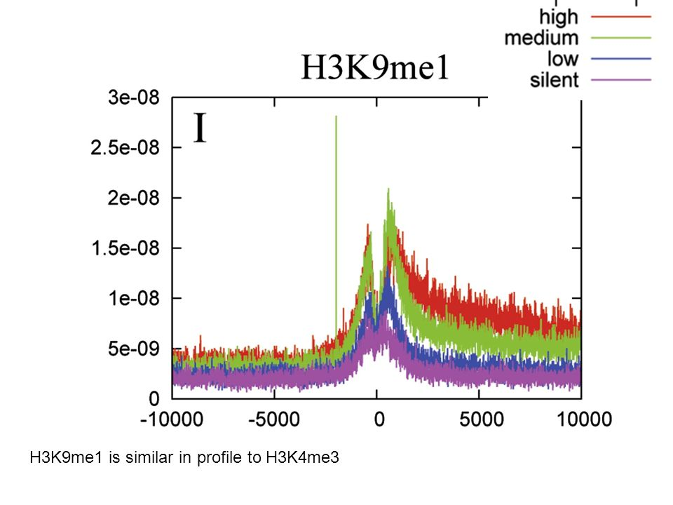 H3K9me1 is similar in profile to H3K4me3