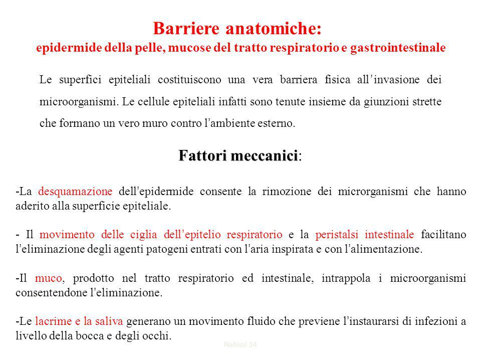 Barriere anatomiche: Fattori meccanici: