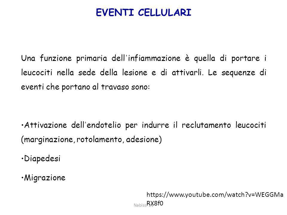 EVENTI CELLULARI