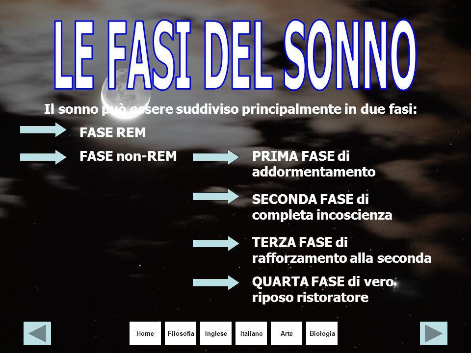 LE FASI DEL SONNO Il sonno può essere suddiviso principalmente in due fasi: FASE REM. FASE non-REM.