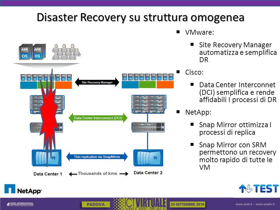 Disaster Recovery su struttura omogenea