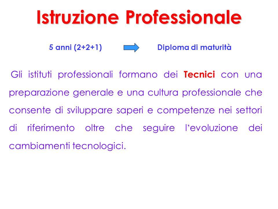 Istruzione Professionale