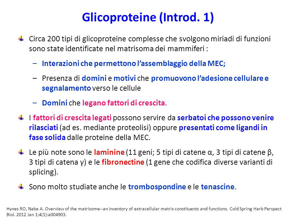 Glicoproteine (Introd. 1)