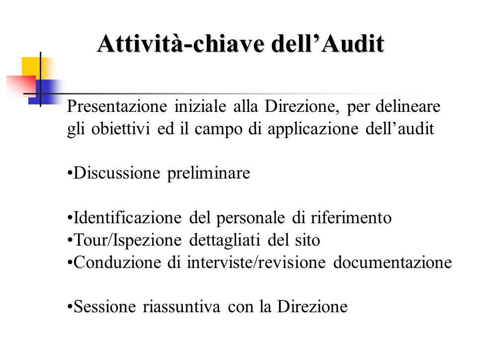 Attività-chiave dell'Audit