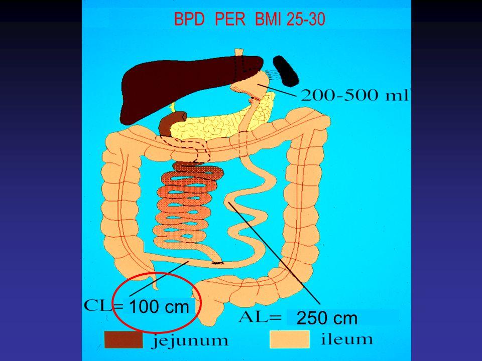 BPD PER BMI 25-30 100 cm 250 cm