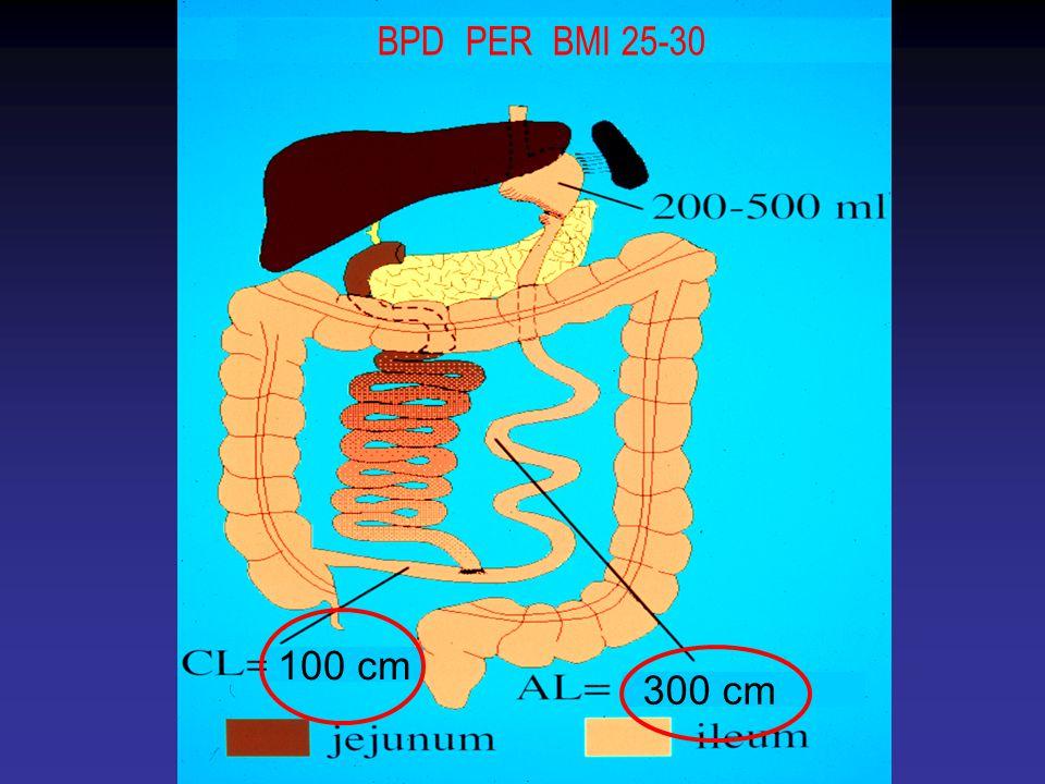 BPD PER BMI 25-30 100 cm 300 cm