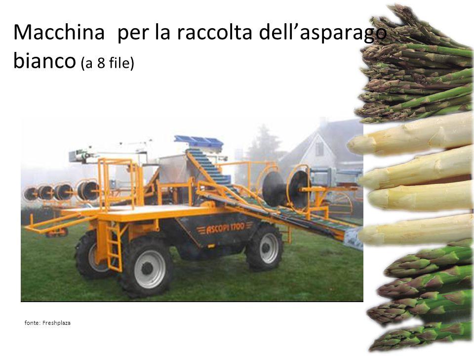 Macchina per la raccolta dell'asparago bianco (a 8 file)