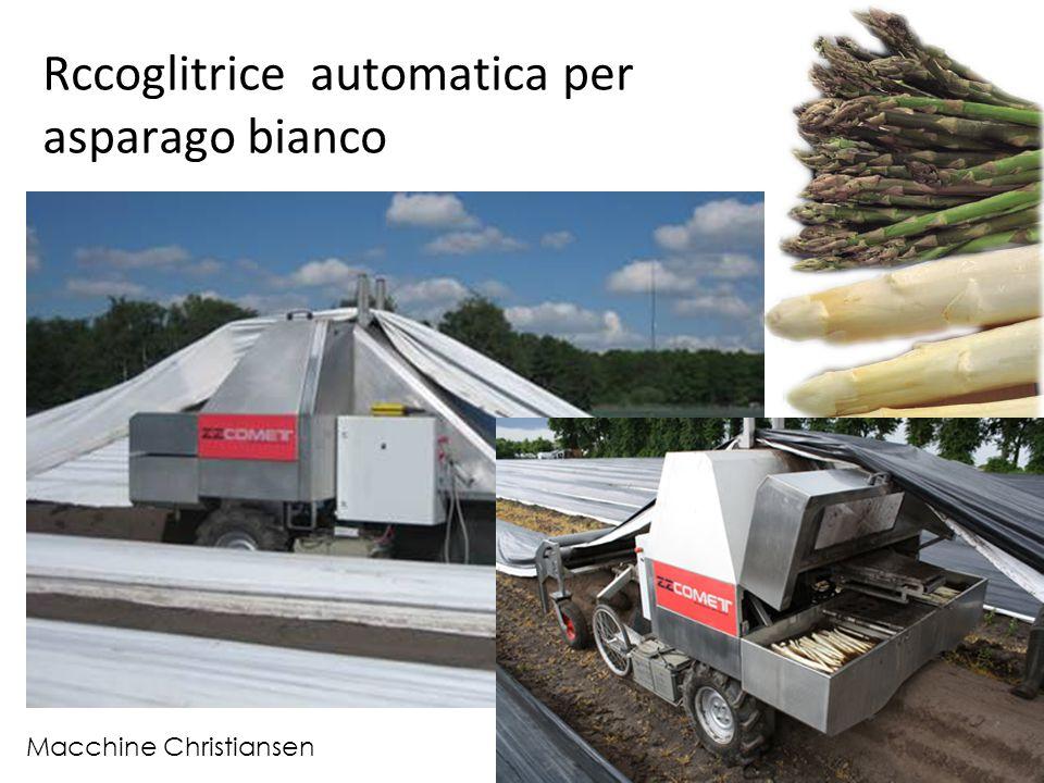 Rccoglitrice automatica per asparago bianco