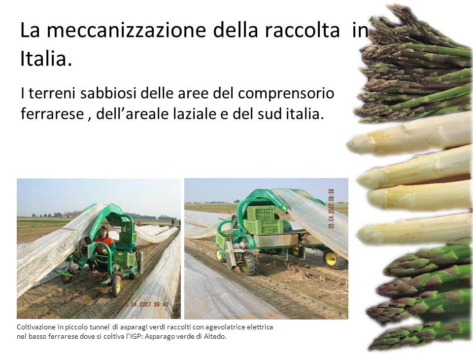 La meccanizzazione della raccolta in Italia.