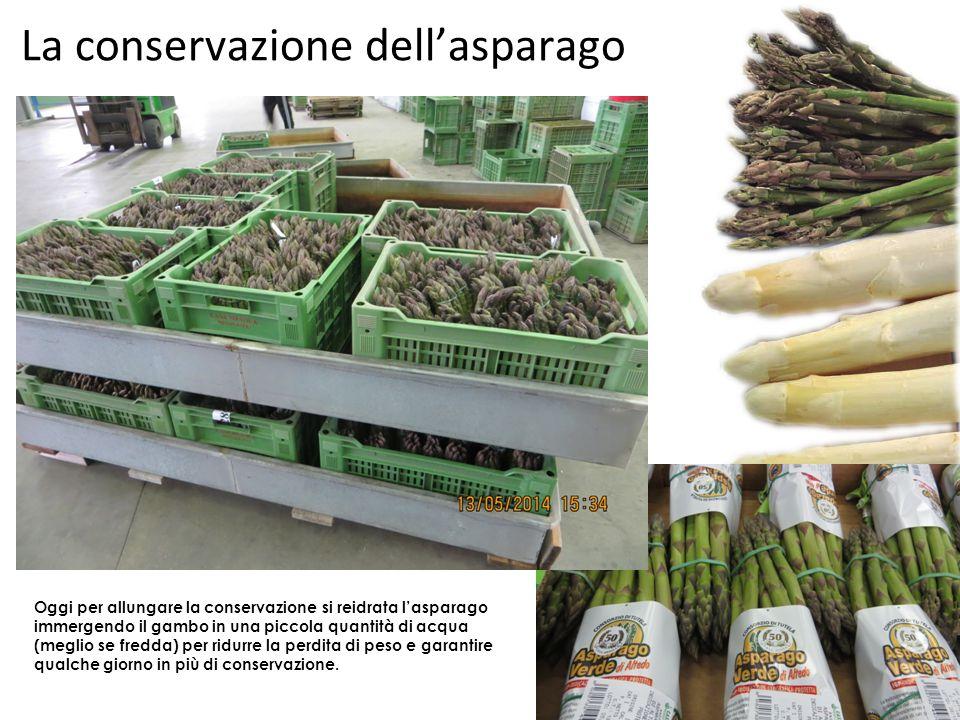 La conservazione dell'asparago