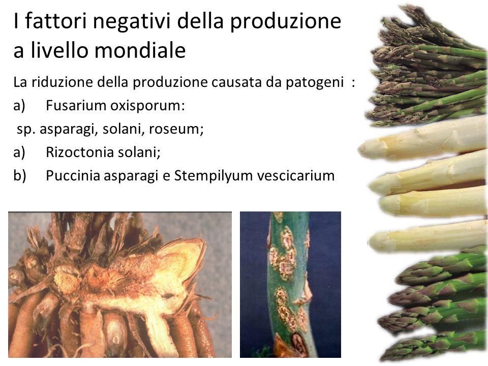 I fattori negativi della produzione a livello mondiale