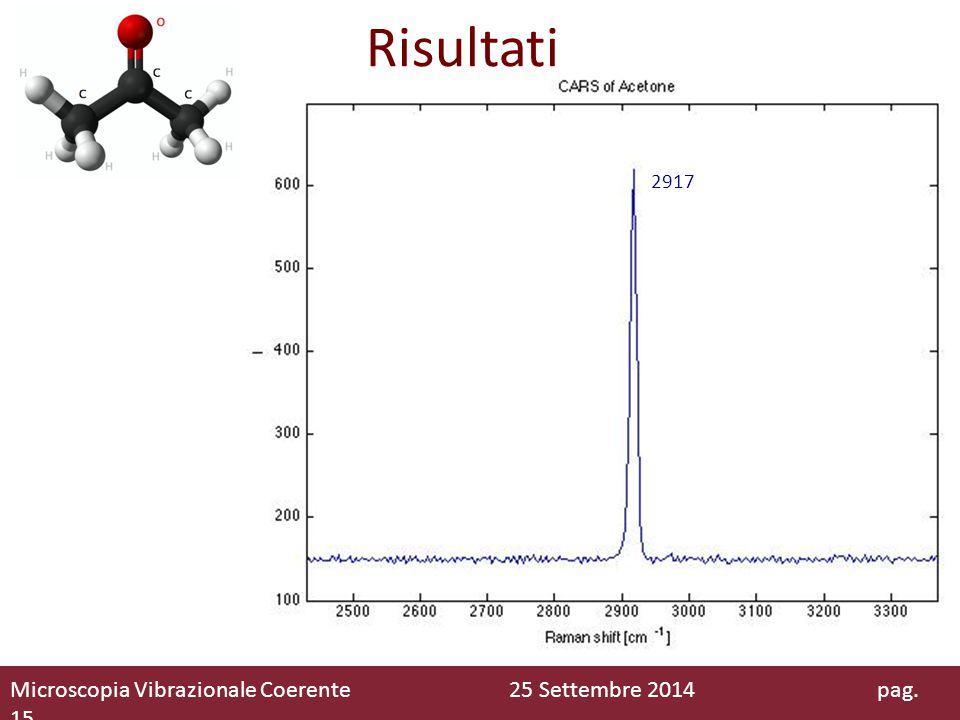 Risultati Microscopia Vibrazionale Coerente 25 Settembre 2014 pag. 15