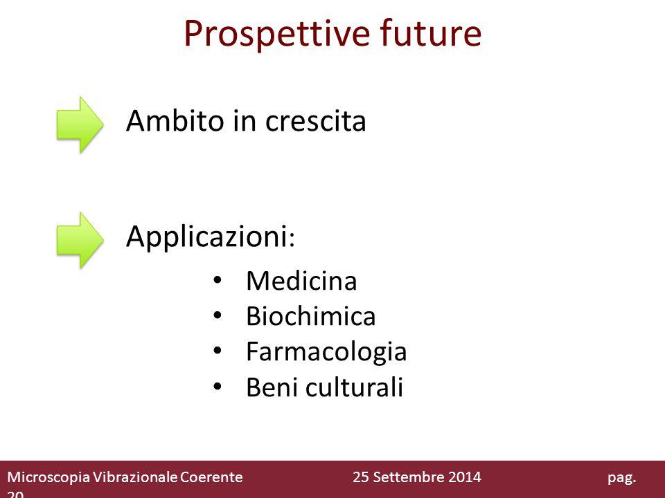 Prospettive future Ambito in crescita Applicazioni: Medicina