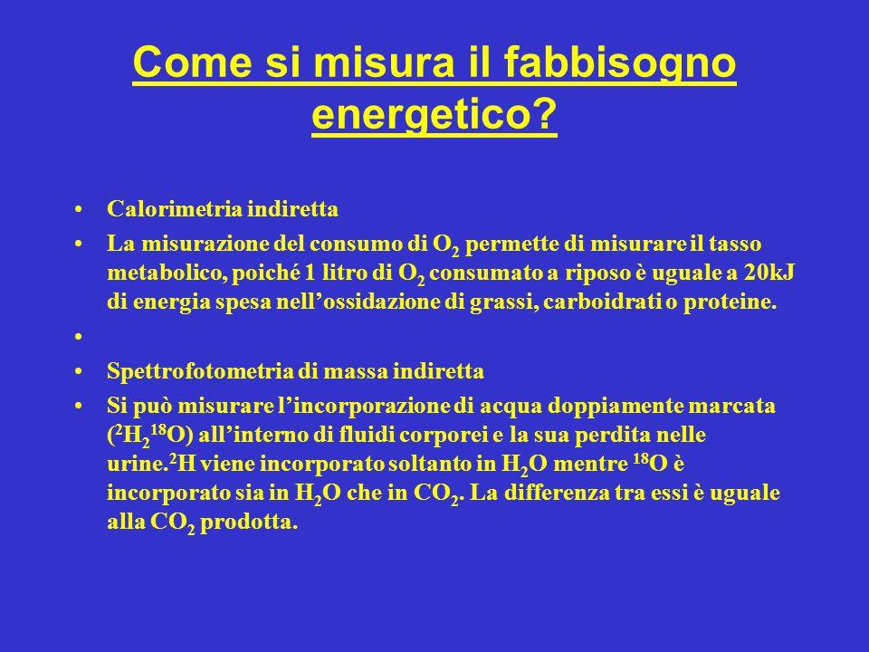 Come si misura il fabbisogno energetico