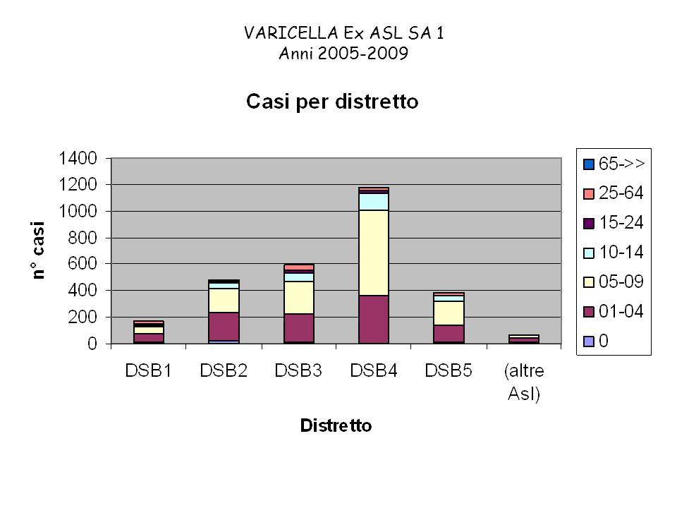 VARICELLA Ex ASL SA 1 Anni 2005-2009