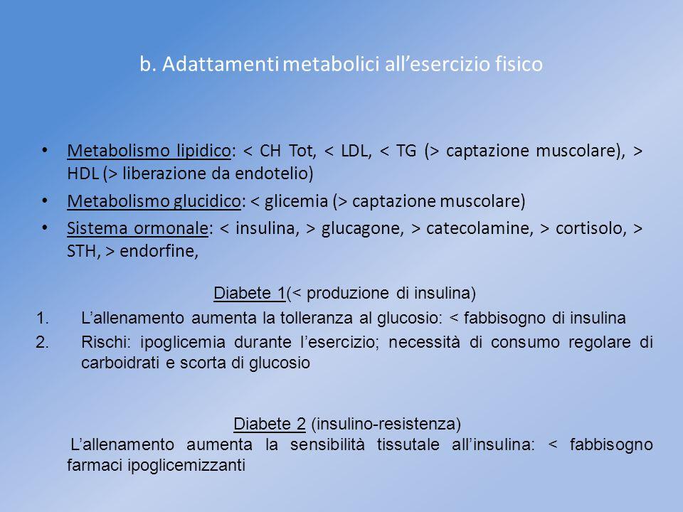 b. Adattamenti metabolici all'esercizio fisico