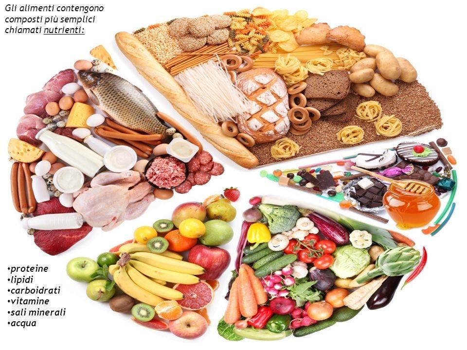 Gli alimenti contengono composti più semplici chiamati nutrienti: