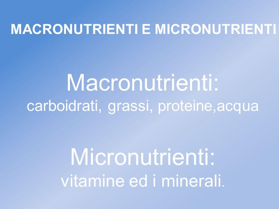 carboidrati, grassi, proteine,acqua