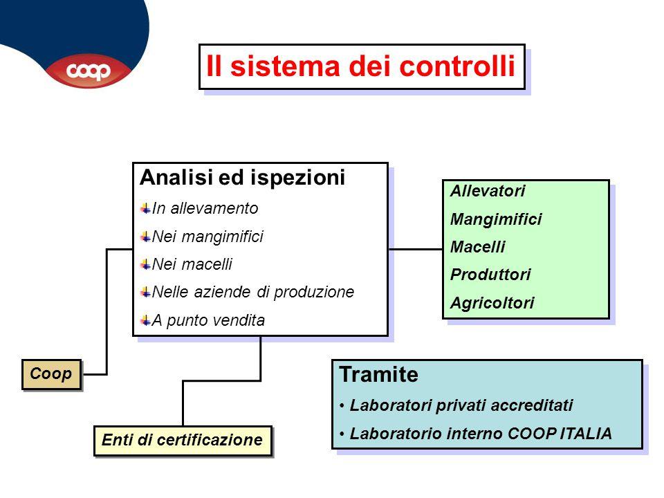 Il sistema dei controlli