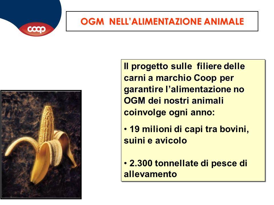 OGM NELL'ALIMENTAZIONE ANIMALE